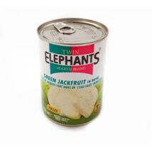 Twin Elephants Zöld Jackfruit 540 g